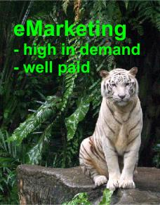 eMarketing high in demand & well paid